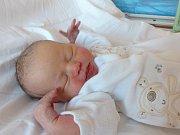 Monika Sepekovská se narodila 16. února 2019, vážila 3500 g a měřila 51 cm. V Dolních Krutech se z ní těší sestřička Anetka (2) a rodiče Lucie a Martin.