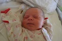Elen Milanovičová se poprvé podívala na maminku Radku a tatínka Martina 26. srpna 2014. Po narození se pyšnila mírami 48 centimetrů a 3430 gramů. Doma v Pečkách se na sestřičku těšil osmiletý David.