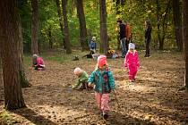 Školka v lese v Kolíně.