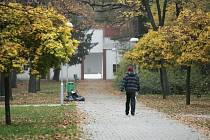 Cesty na Kmochově ostrově v Kolíně v zimě udržované nebudou.
