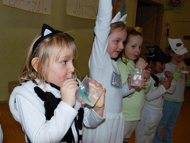 Pejsci a kočičky z mateřské základní školky v Malíně si pochutnali na sladkých dortících.