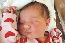 Viola Michálková se rozkřičela 21. března 2016. Po porodu měřila 51 centimetr a vážila 3885 gramů. V Zásmukách se z ní radují maminka Květa, tatínek Martin a sestry Karolínka (12) s Leonkou (6).