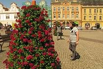 Květinová pyramida na Karlově náměstí v Kolíně.