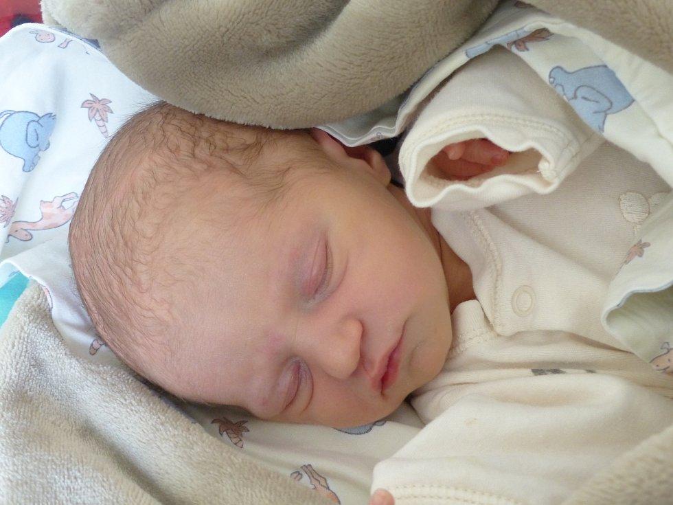 Alice Ponížilová se narodila 13. listopadu 2019 v kolínské porodnici, vážila 3100 g a měřila 49 cm. Domů odjela s maminkou Katarinou a tatínkem Markem.