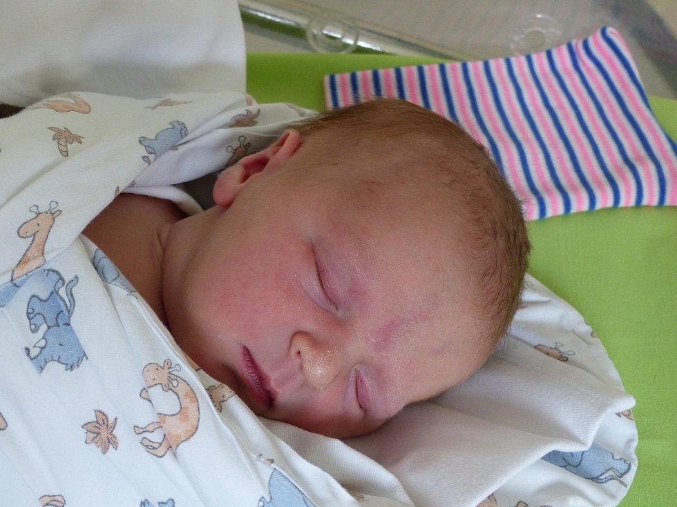 Kristýna Pelcová se narodila 2. prosince 2020 v kolínské porodnici, vážila 3620 g a měřila 50 cm. Do Podmok si ji odvezli bráškové David (3), Alexandr (1) a rodiče Anastasia a Michal.