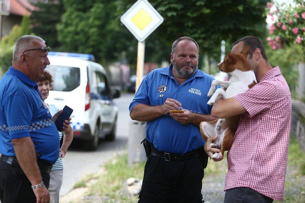 Záchrana ztraceného pejska v Sadové ulici v Kolíně v pondělí 19. července 2021.