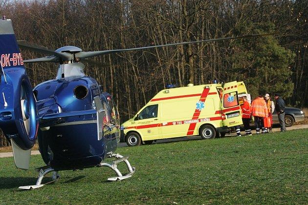 Při kácení stromu u Veltrub se vážně zranil muž.