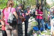 Blešák na vzduchu v Komenského parku