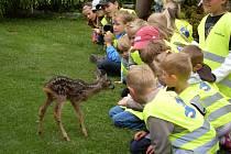 Dlouhá cesta dětí za Čimbou