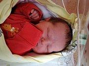 Viktorie Dostálová se narodila 2. prosince 2015 s mírami 50 centimetrů a 3840 gramů. Maminka Kateřina a tatínek Štěpán si ji odvezli do Hlavečníku, kde se na ni těšil bráška Šimon (20 měsíců).