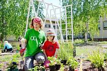 Rodiče už vytvořili na zahradě mateřské školky spoustu prvků, obnovují a upravují zeleň, zmizely túje, přibudou ovocné stromy. Naposledy si rodiče o víkendu zabrigádničili při vysazování letniček nebo jahod.