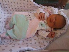 Nikol Břichnáčová se narodila 15. ledna 2018 s mírami 3610 gramů a 51 cm. Maminka Kristýna a tatínek Petr si ji odvezou do Plaňan.