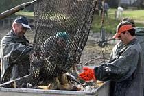 Nepříznivé počasí. Podle rybářů současné počasí ohrožuje nejen ryby, ale všechny druhy vodních živočichů bez výjimky.