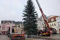 Vánoční strom na kolínském náměstí.