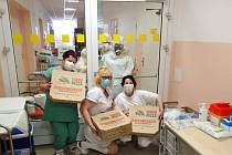 Zdravotníkům pomohou pizzy za 100 tisíc korun.
