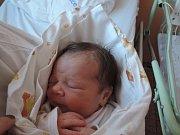 Viktorie Beranová se narodila 28. prosince 2016 rodičům Kristýně a Petrovi z Českého Brodu. Po porodu měřila 50 centimetrů a vážila 3090 gramů.