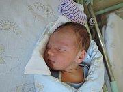 David Slanina je prvorozeným synem Martiny a Miloslava. Narodil se 27. prosince 2016 s váhou 3265 gramů a mírou 50 centimetrů. Rodina žije v Poděbradech.