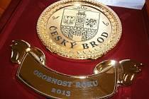 Pamětní medaile pro českobrodskou Osobnost roku 2013
