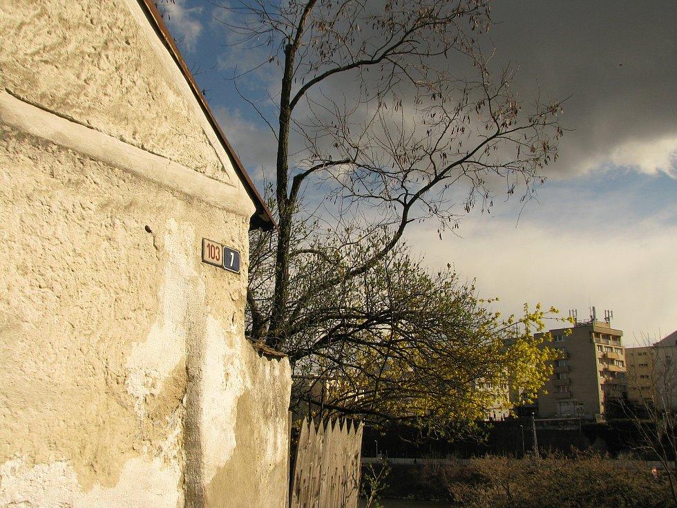 Jaro na Zálabské skále v Kolíně.
