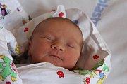 Viktorie Šípová se poprvé rozhlédla 12. července 2017. Vážila 3390 gramů a měřila 52 centimetrů. V rodném Kolíně bude žít se sestřičkou Sárou (6), maminkou Janou a tatínkem Davidem.