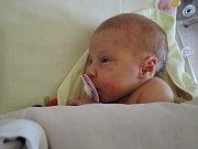 Petr a Veronika z Kozojed mají dceru. Vivien Šouková se narodila 4. listopadu 2017 s váhou 3170 gramů a výškou 49 centimetrů.