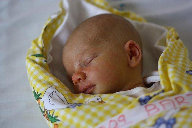 Anna Bartošová přišla na svět 17. října 2011 s výškou 49 centimetrů a váhou 2950 gramů. Maminka Petra Pokorná a tatínek Aleš Bartoš dceru vychovávají v obci Onomyšl.