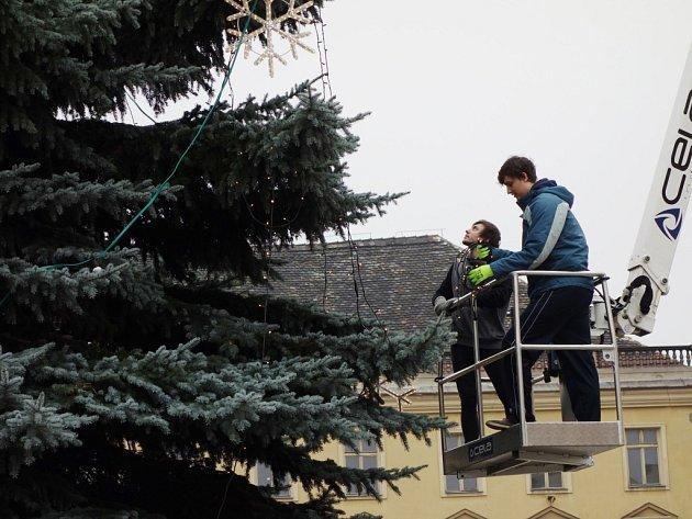 Vánoční strom na kolínském Karlově náměstí.