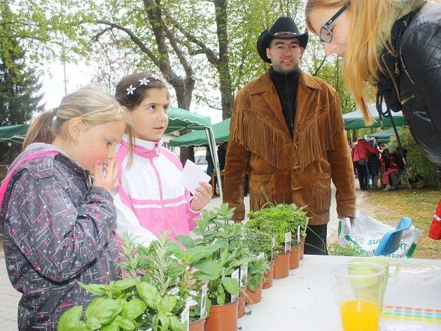 Den Země v kolínském lesoparku Borky