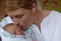 Linda Štelová se narodila 27. dubna 2019, vážila 3730 g a měřila 50 cm. V Kolíně bude bydlet s maminkou Pavlínou.