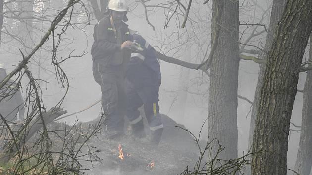 Požár mezi Bělušicemi a Jelenem