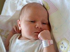Petra Urbanová se poprvé podívala na maminku Petru a tatínka Jiřího 5. srpna 2013. Po narození měřila 50 centimetrů a vážila 3560 gramů. Svou prvorozenou si rodiče odvezli do Bylan.