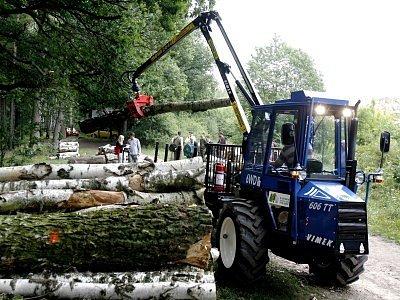 Lesy vynášejí. Majitelé lesů měli vloni dvakrát vyšší zisk z hektaru než rok předtím.