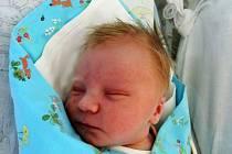 Adam Novák je prvorozeným synem Libora a Anežky z Poděbrad. Na svět se poprvé podíval 10. května 2017 s váhou 3320 gramů a výškou 50 centimetrů.
