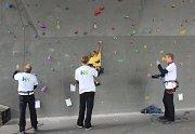 Pod mostem cup se konal počtvrté v Kolíně na lezecké stěně pod Novým mostem.