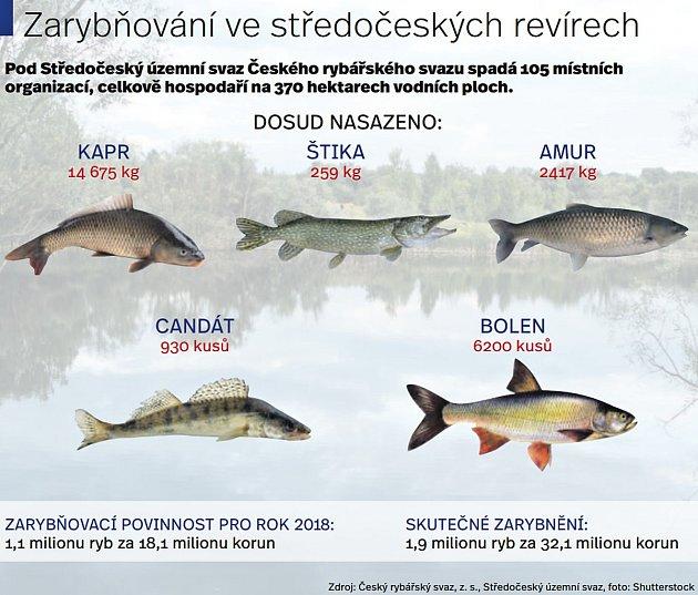 Zarybňování ve středočeských revírech.