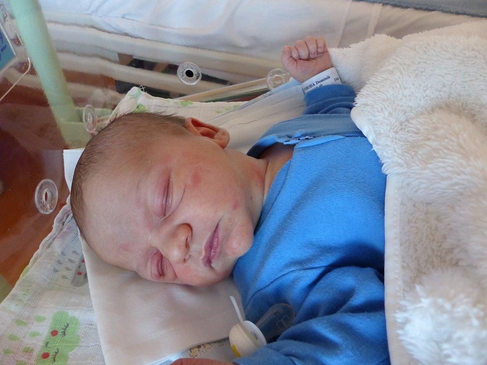 Dominik Svoboda se narodil 12.12.2018, vážil 4085 g a měřil 52 cm. V Dobšicích ho přivítá bráška Matěj (3.5) a rodiče Adéla a David.