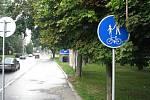 Dopravní značky mají problém se zelení.