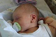 David Langr se narodil 12. června 2017 mamince Simoně a tatínkovi Jakubovi. Po porodu vážil 2940 gramů a měřil 50 centimetrů. Rodina žije v Ratboři.