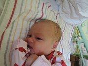 Světlana Chámová spatřila světlo světa 20. prosince 2016. Po porodu se pyšnila výškou 51 centimetr a váhou 3355 gramů. Maminka Eliška a tatínek Petr si svou prvorozenou odvezli do Kutné Hory.