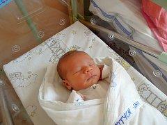 Jan Šitych se narodil 28.října 2013 s výškou 51 cm a váhou 3 720 gramů. Maminka Mirka  a tatínek Michal si ho odvezli domů do Kolína k bráškovi Míšovi.