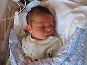 Jakub Šebek se prvně podíval na maminku Jitku a tatínka Martina 14. února 2017. Jeho poporodní míry byly 49 centimetrů a 3225 gramů. Dětským světem ho vNymburce bude provázet sestřička Terezka (3,5).
