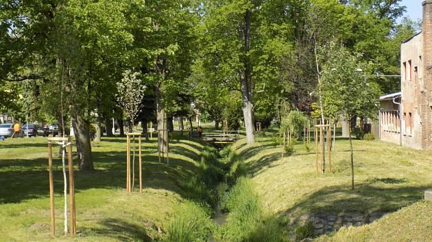 Revitalizace zeleně v Plaňanech