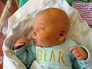 Denis Doktorík se narodil 15.12.2018, vážil 3625 g a měřil 51 cm. V Žiželicích ho přivítá sestřička Nikola (3), maminka Nikola a tatínek Denis.