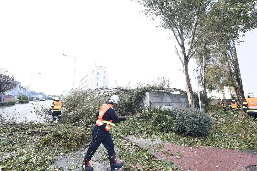 S popadanými větvemi si hasiči museli poradit v Polepské ulici v Kolíně.