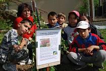 Prvňáci zasadili strom s poselstvím dalším generacím