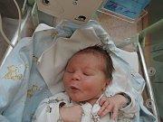 Jan Seifert se rozplakal 2. ledna 2017 smírami 53 centimetry a 3750 gramů. Maminka Aneta a tatínek Lukáš si svého prvorozeného odvezli do Kutné Hory.