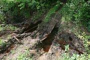 Okolí skládky chemikálií u Zásmuk po dešti.