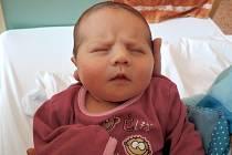 Eliška Cibulková spatřila světlo světa 29. března 2016. Její poporodní míry činily 50 centimetrů a 3705 gramů. Maminka Jana a tatínek Marek si svou prvorozenou odvezli do Chvalovic.