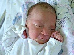 Prvním potomkem maminky Michaly a tatínka Oty z Kolína je dcera. Kateřina Sekerová poprvé zakřičela 19. května 2013. Po narození měřila 43 centimetry a vážila 2550 gramů.
