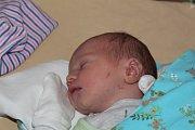 Angel Julian Martinez se narodil 14. září 2017 s váhou 3145 gramů a výškou 50 centimetrů. Společně s šestiletou Emou, maminkou Darjou a tatínkem Angelem bude vyrůstat v Újezdě nad Lesy.